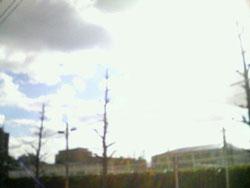 200612111新潟市.jpg