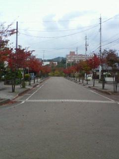 20071102~01.jpg