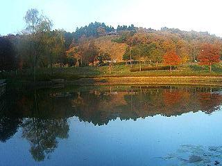 県立植物園1.jpg